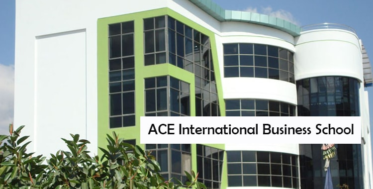 ACE International Business School Fees Structure