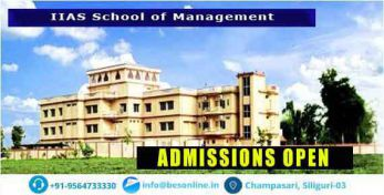 IIAS School of Management Admissions